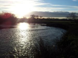 River Dove 06-12-14 (50)